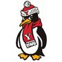 Youngstown State logo
